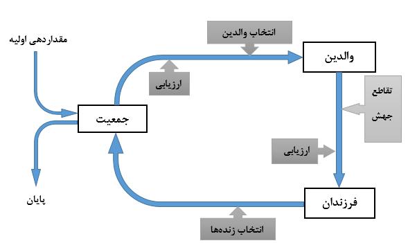 انجام پروژه الگوریتم ژنتیک