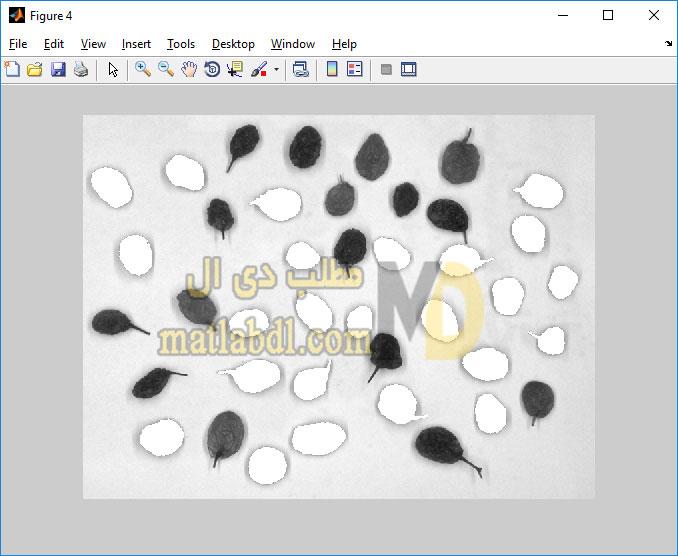 پروژه درجه بندی کشمش با استفاده از پردازش تصویر در متلب